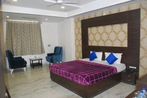 Budget-Hotels-Udaipur (2)
