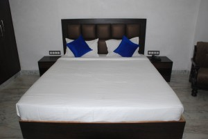 Budget-Hotels-Udaipur (6)